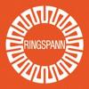 RFN 7012 80X120, Ringspann Spannsatz 80X120