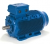 Электродвигатели WEG WEG серия W22 100 L2 3 кВт 3000 об/мин